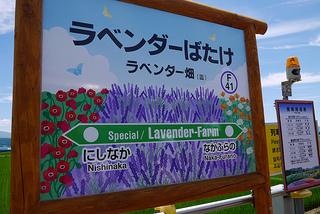 ラベンダー駅.jpg