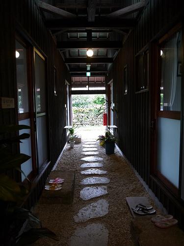 takenoko35.jpg