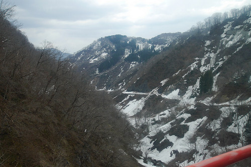 ykiyama.jpg